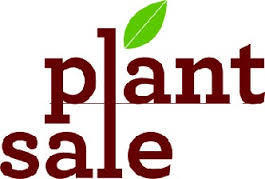 FFA Plant Sale Clearance Event